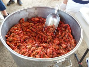A vat of crawfish.