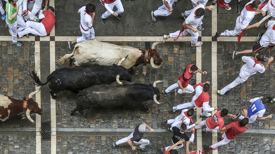 Running of the Bulls in Spain.